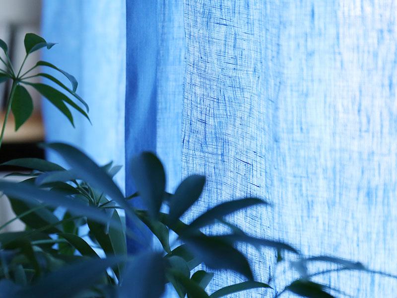 ドレープ /ブルー 日中の陽の光