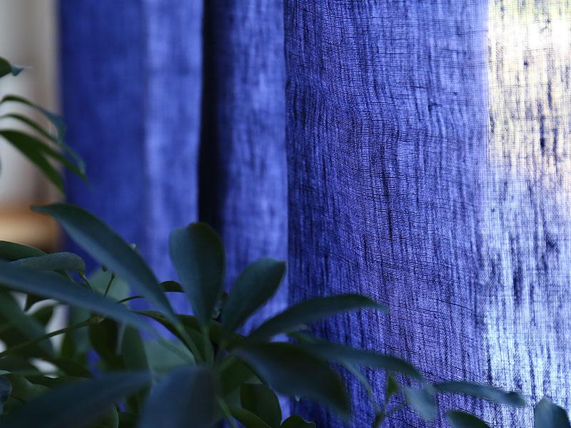 ドレープ /ネイビー 日中の陽の光